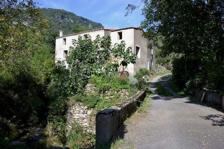 room with a river view in secluded once water mill - Montjoi - Bed & Breakfast