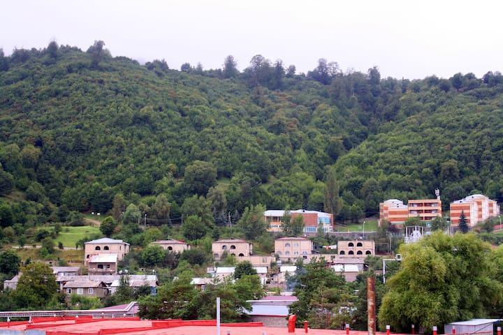 Mariam Apartment - Dilijan - Wohnung