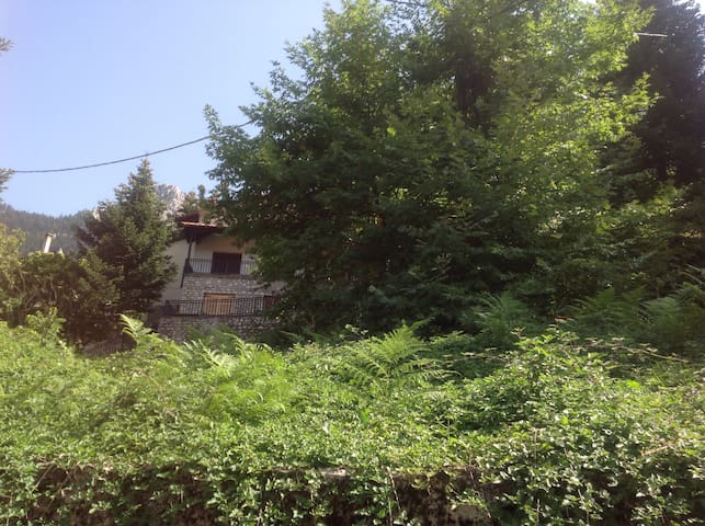 Villa in Elati - Elati - Villa