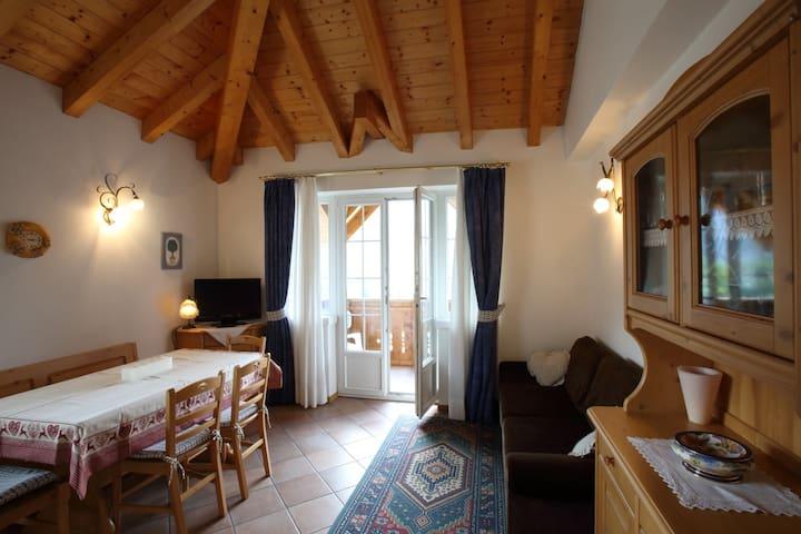Casa Rubino...mountain & lago - Molveno - Apartment