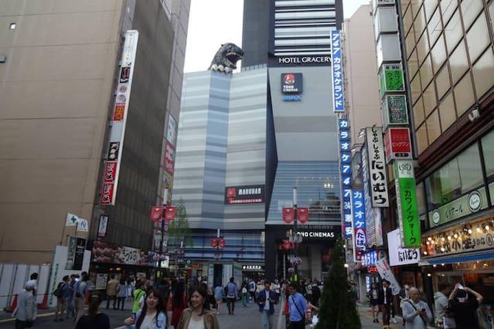 The terminal Shinjuku station partC - Shinjuku-ku