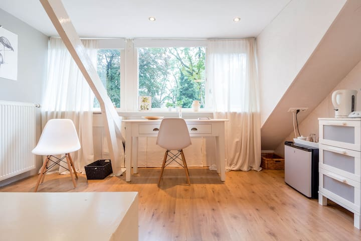 Bright attic with private bathroom - Zeist - 獨棟