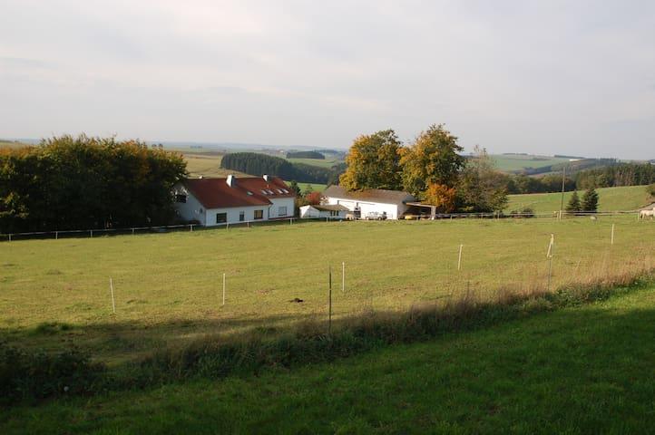 Ferienwohnung Krumbacher Hof/Eifel bei Prüm - Herzfeld - Appartement