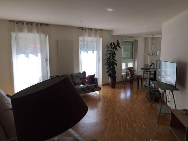 Nice apartment in Geneva - Ginebra - Departamento