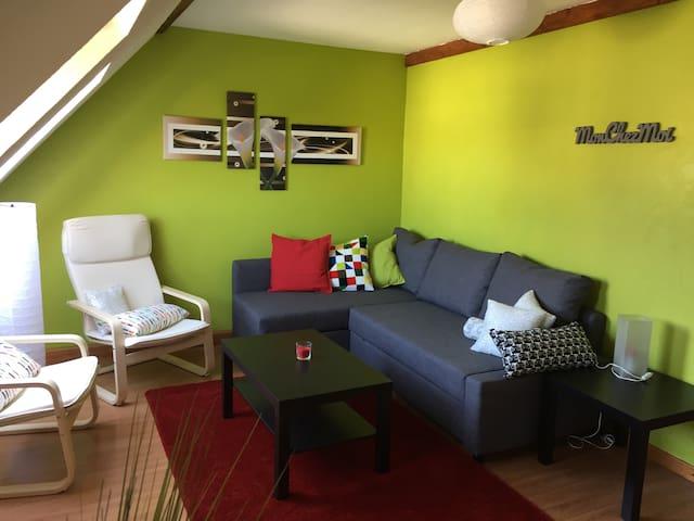 Attic apartment city center Haguenau - Haguenau - Lägenhet