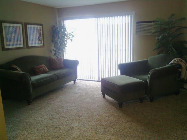 Comfy Sofa Near Lake Minnetonka and Paisley Park - Excelsior - Leilighet