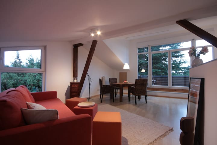 Charming Penthouse with Balcony - Mainz - Departamento