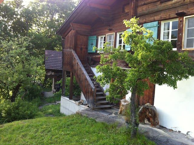 Ferienhaus Blatti - Hasliberg - Leilighet