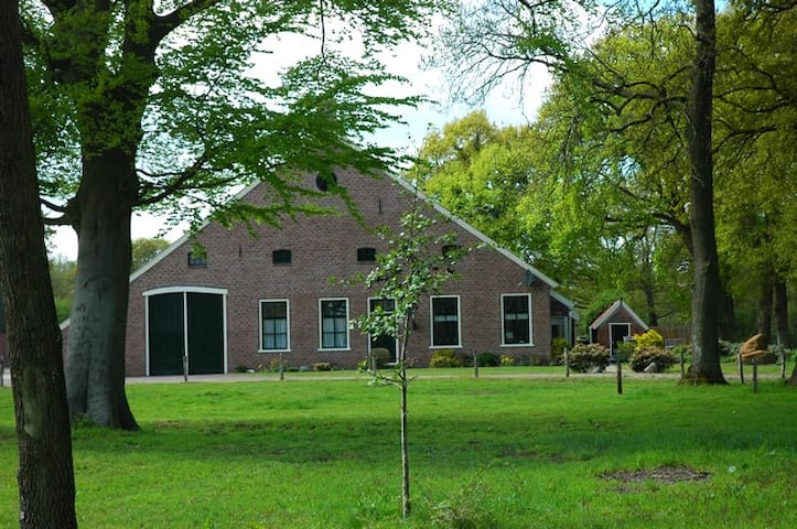 De Hiddinghhoeve - Onstwedde - Bed & Breakfast