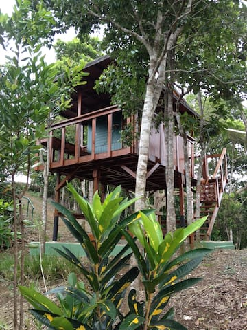 Lake Carite Treehouse - Cayey