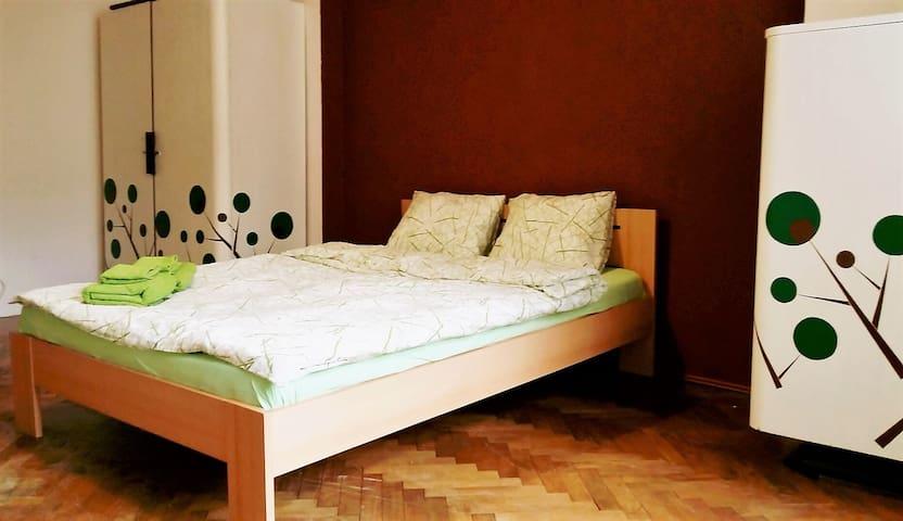 Nice, spacious, bright room in retro style. - Praga - Apartamento