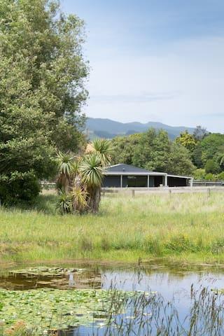 Private studio near the river - Waikanae - Chatka