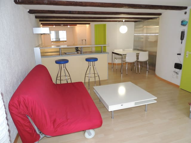 Flat in the historic city centre of Solothurn - Soleura - Apartamento