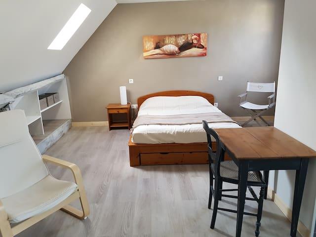 Appartement en duplex proche gare et centre ville - Laval - Lägenhet