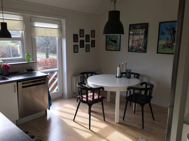 Light and ceilinged apartment in calm surroundings - Risskov - Leilighet