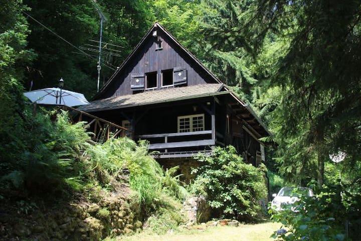 Schwarzwaldhaus - Wolfach - Casa