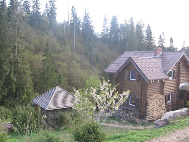 wooden log cabin in the Carpathian mountains - Slavs'ke - Hus