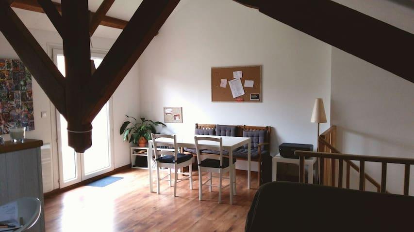 Grand appartement plein de charme! - Aguessac, Occitanie, FR - Apartemen