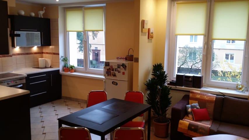 Mieszkanie (48m) w pełni urządzone - Bydgoszcz - Daire