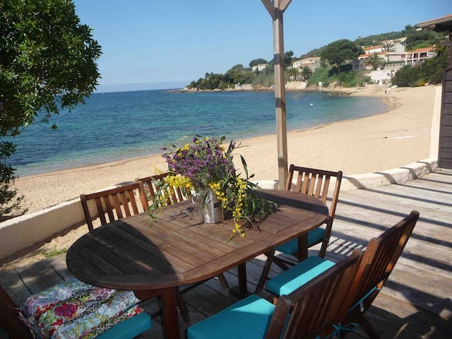 Lovely apartment on the beach - Casaglione - Lägenhet
