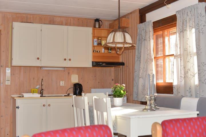 Geilo, Hallingdal  m/kjøkken og bad - Geilo - Rumah
