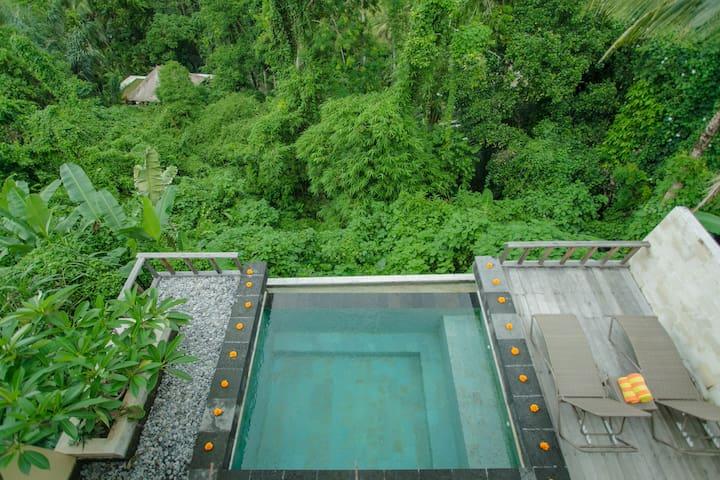 Private Pool Villa2 @ Sayan Terrace - Ubud - Vila