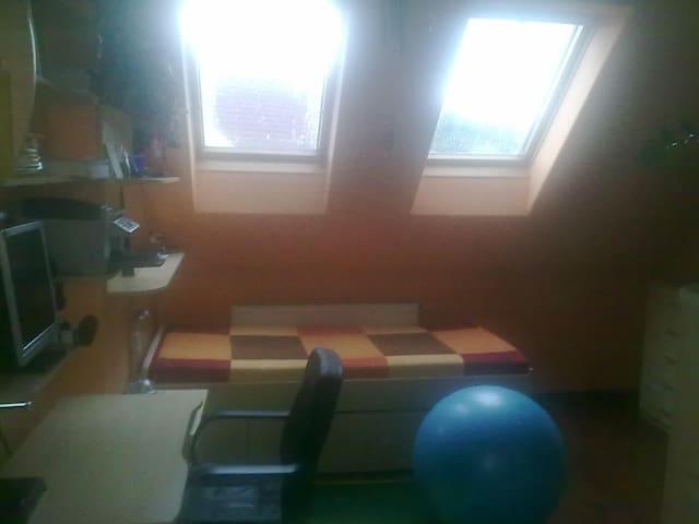 Room in Moravian paradise! - Velké Opatovice - Lägenhet