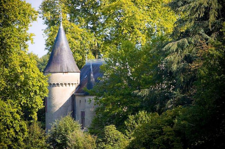 Honeymoon Suite at Chateau Ribagnac - Saint-Martin-Terressus - Şato