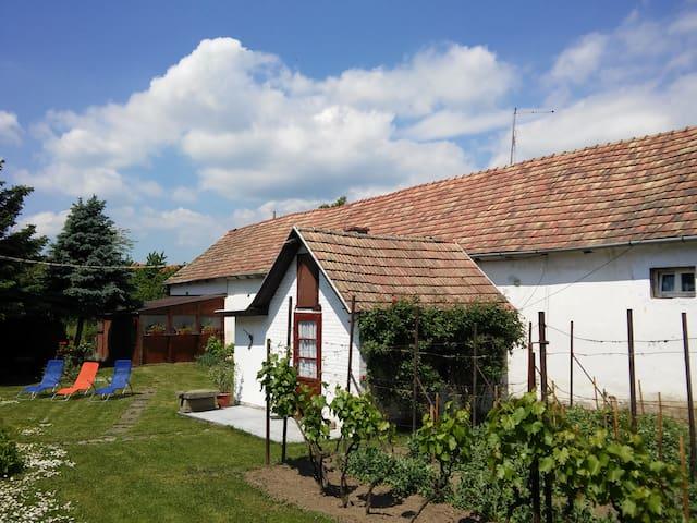 Cute house near to Budapest - Dunabogdány - Apartment