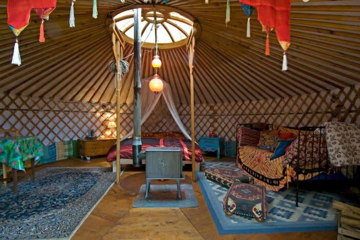 LUXE YURT IN DE VRIJE NATUUR - Diessen - Yurt