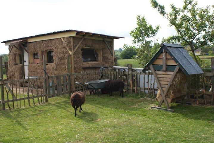 Private Tiny house en paille and B&B - La Carneille - Annat