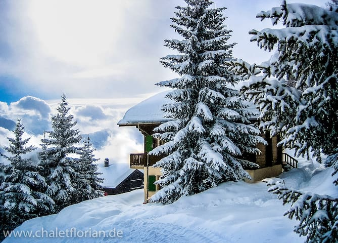 A Charming and Comfortable Chalet - Riederalp - Chalet