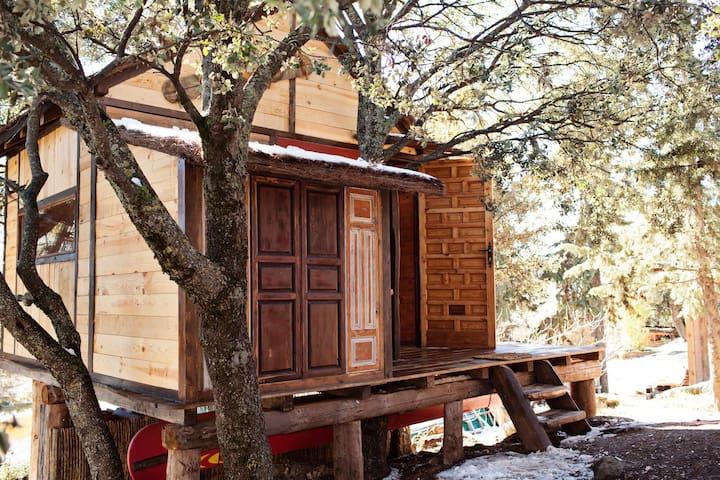 Fantastic treehut betwen old oaks  - Huétor - Santillán - 樹屋