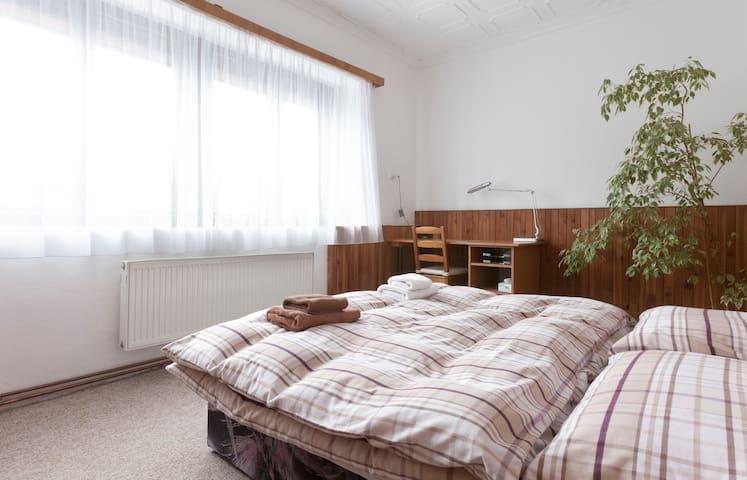 3-bedroom apartment with a garden - Tursko - Apartamento