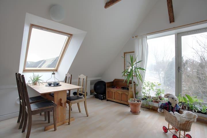 beautiful farm apartment - Odder