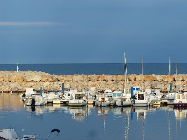 Vue exceptionnelle sur la mer - Argelès-sur-Mer - Apartment