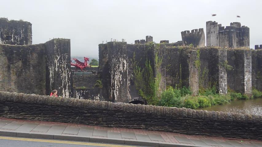 Castles Galore - Caerphilly
