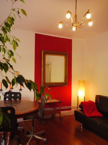 ANABANANAS APARTAMENTO - Konstanz - Appartement