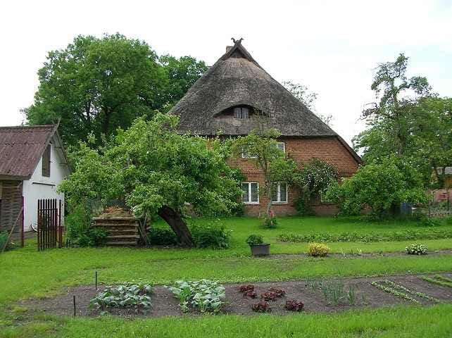 Cozy thatched house apartment - Banzkow - Apartemen