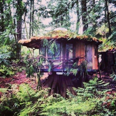 The Stump House: SunRay Kelley - Sedro-Woolley - Boomhut