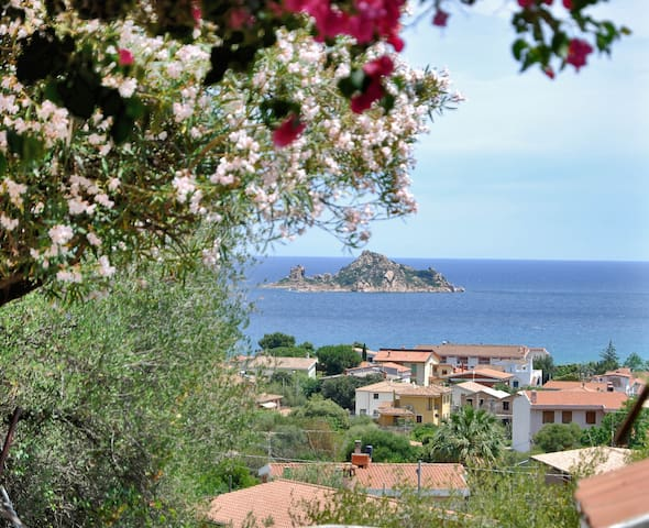 In the heart of Sardinia - Baunei - Daire