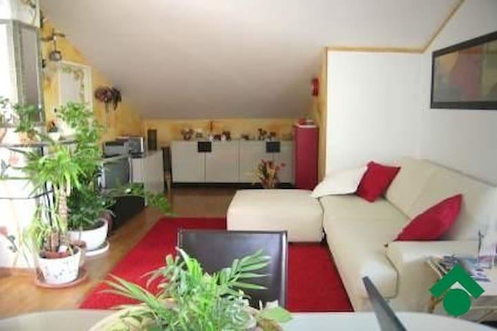 Nice little attic - Castenaso - 公寓
