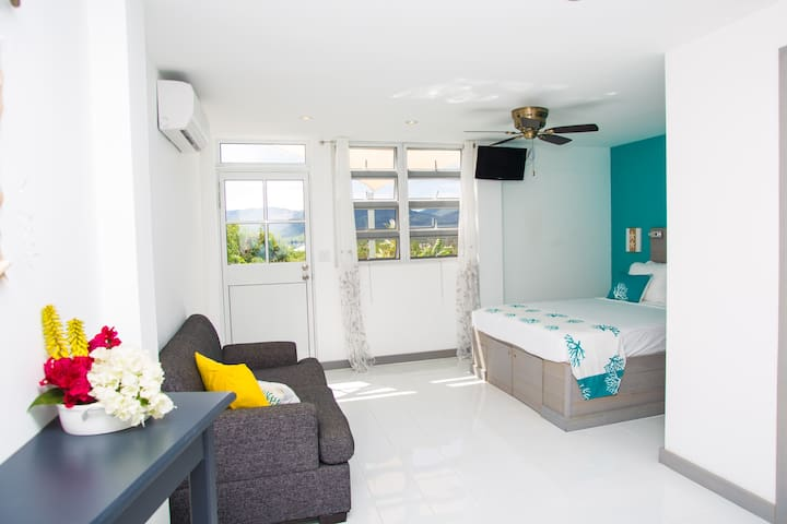 A True Caribbean Escape - Starfish Suite - Saint John's - Apartemen