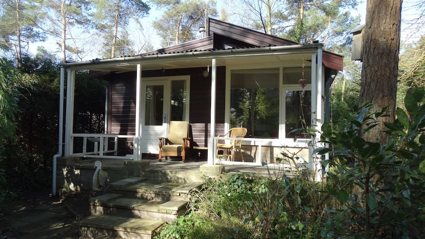 House in the woods - Oisterwijk
