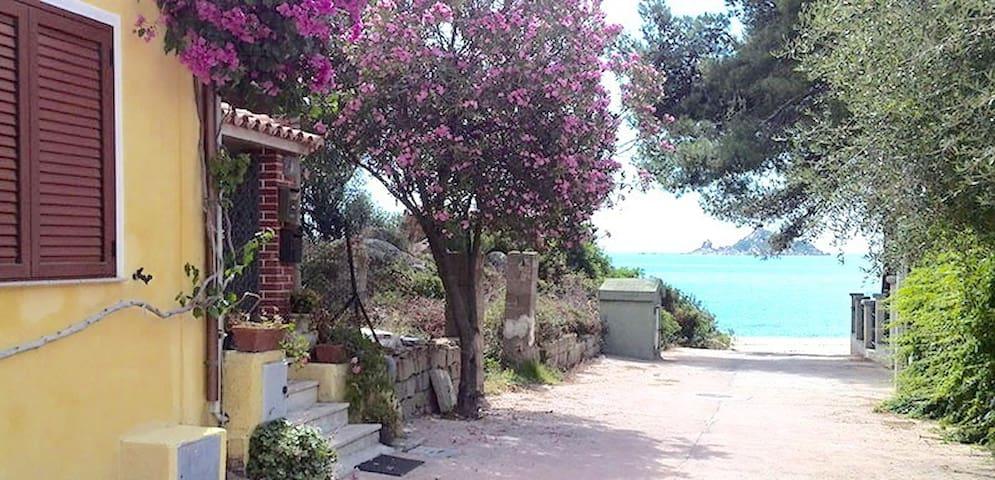 Renovated apartment 10meters from the sea,Sardinia - Santa Maria Navarrese - Leilighet