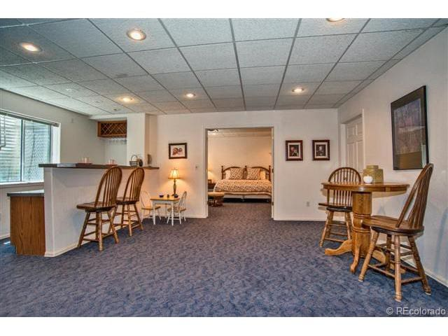 Basement room in convenient location - Lone Tree
