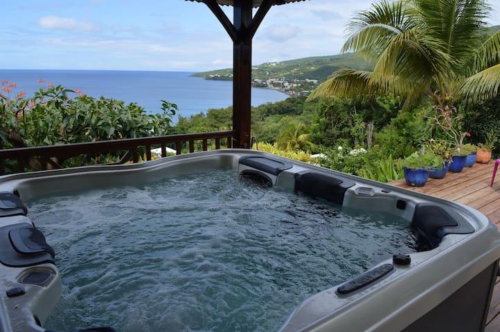 Studio vue mer avec piscine et spa - POINTE NOIRE