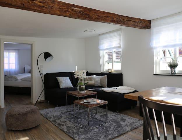 Wohnung Tuchereck im kernsanierten Fachwerkhaus - Michelstadt - Leilighet