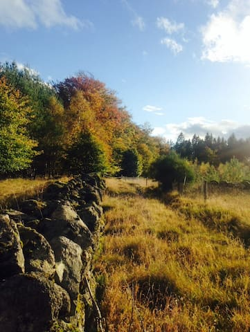 Quiet Country Cottage - Aberdeenshire - Casa