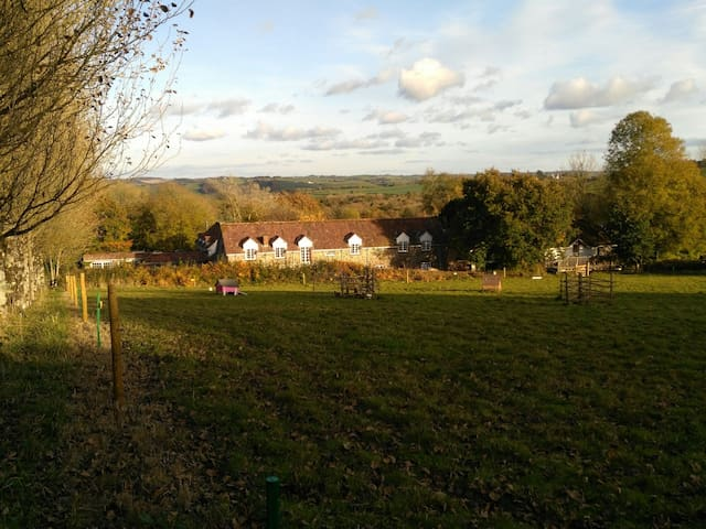 Barnacle: Relaxed, family and dog friendly space. - Atherington - Appartement